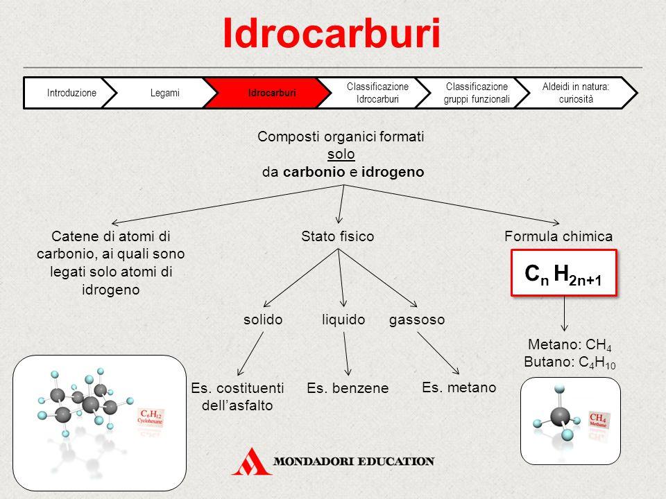 Idrocarburi Cn H2n+1 Composti organici formati solo