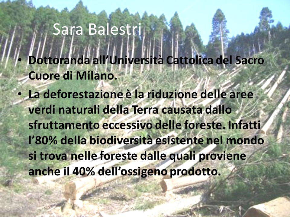 Sara Balestri Dottoranda all'Università Cattolica del Sacro Cuore di Milano.
