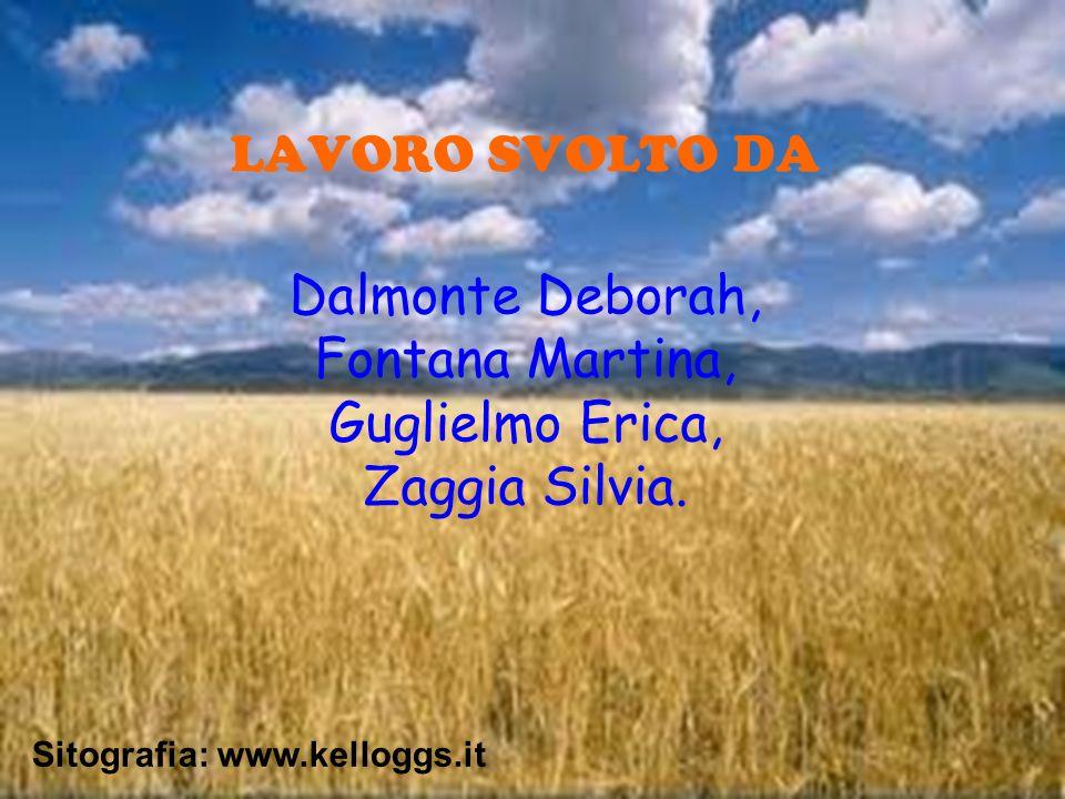 LAVORO SVOLTO DA Dalmonte Deborah, Fontana Martina, Guglielmo Erica, Zaggia Silvia.
