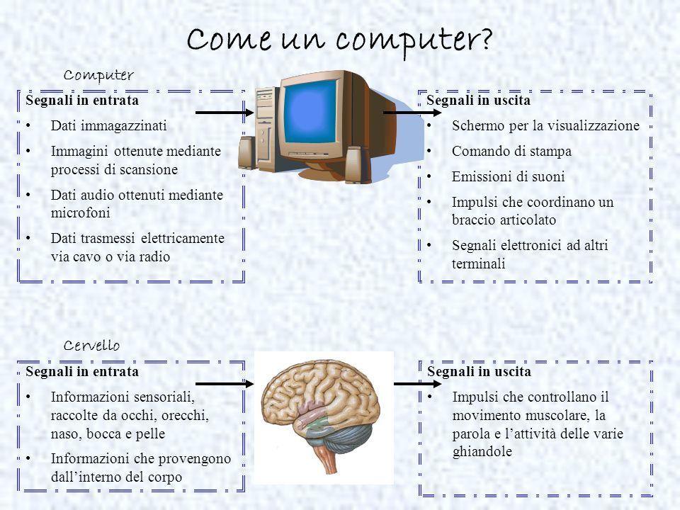 Come un computer Computer Cervello Segnali in entrata