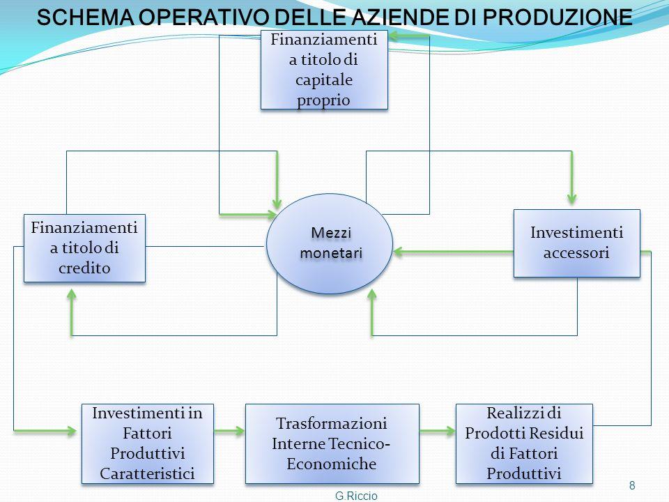 SCHEMA OPERATIVO DELLE AZIENDE DI PRODUZIONE