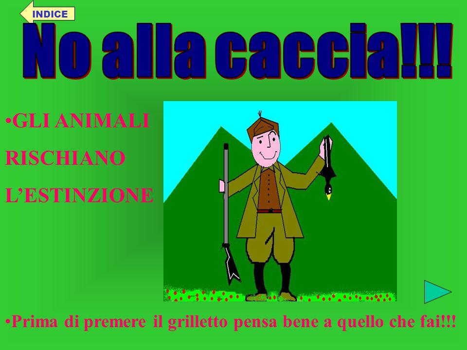 No alla caccia!!! GLI ANIMALI RISCHIANO L'ESTINZIONE