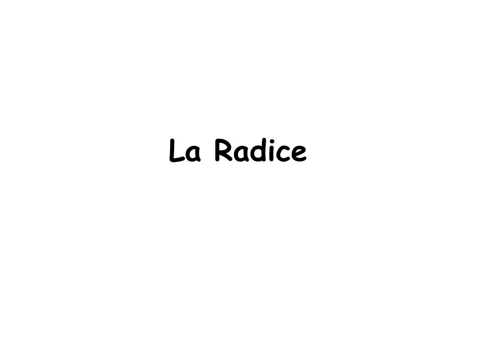 La Radice