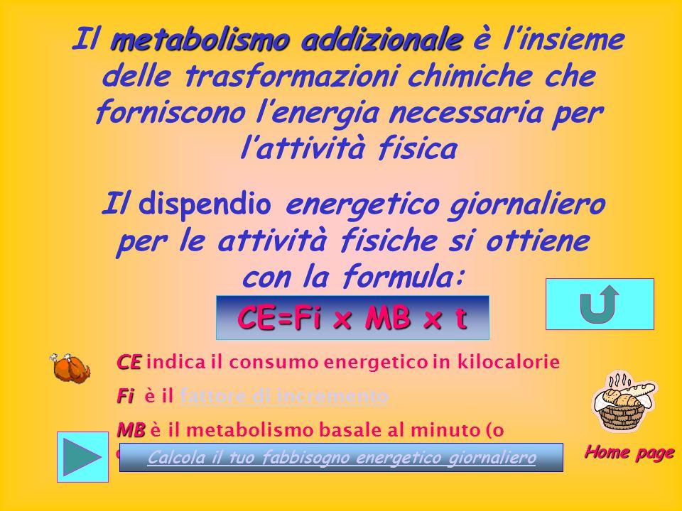 Il metabolismo addizionale è l'insieme