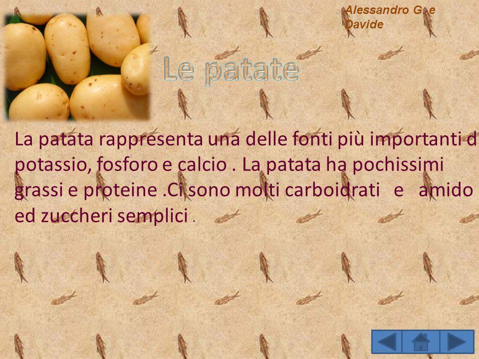 Alessandro G. e DavideLe patate.