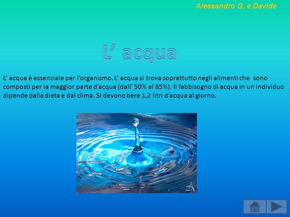L' acqua Alessandro G. e Davide