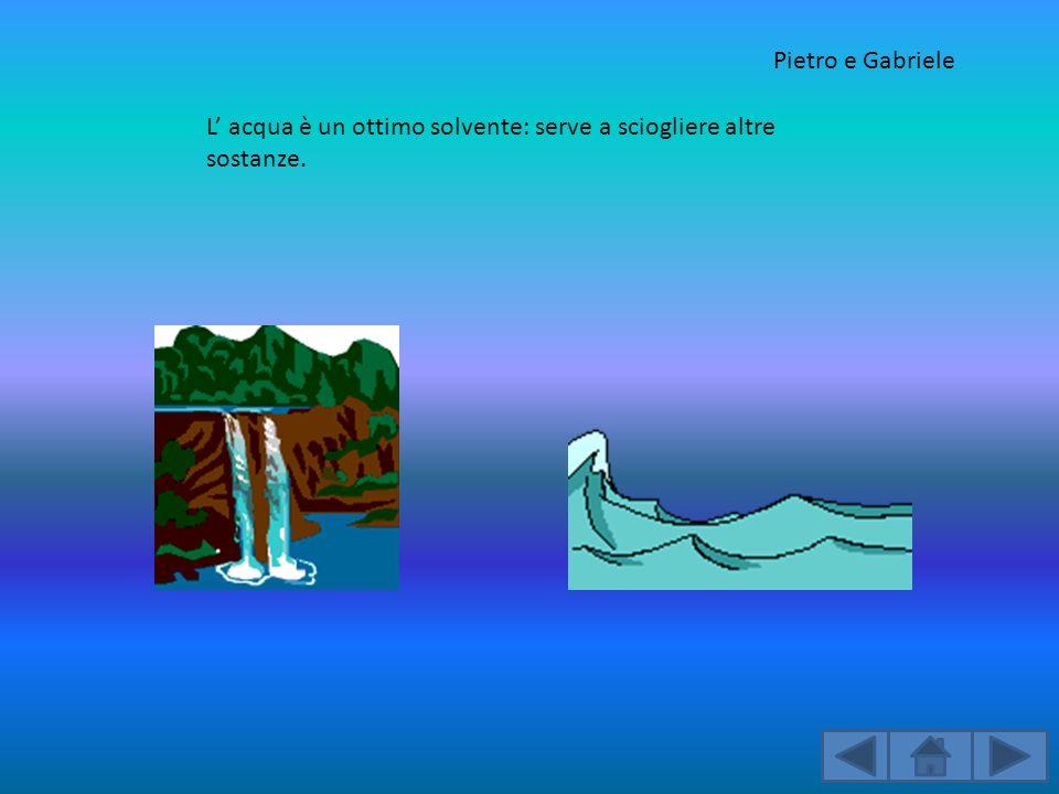 Pietro e Gabriele L' acqua è un ottimo solvente: serve a sciogliere altre sostanze.