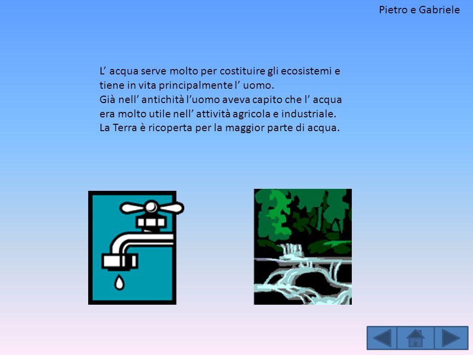 Pietro e Gabriele L' acqua serve molto per costituire gli ecosistemi e tiene in vita principalmente l' uomo.