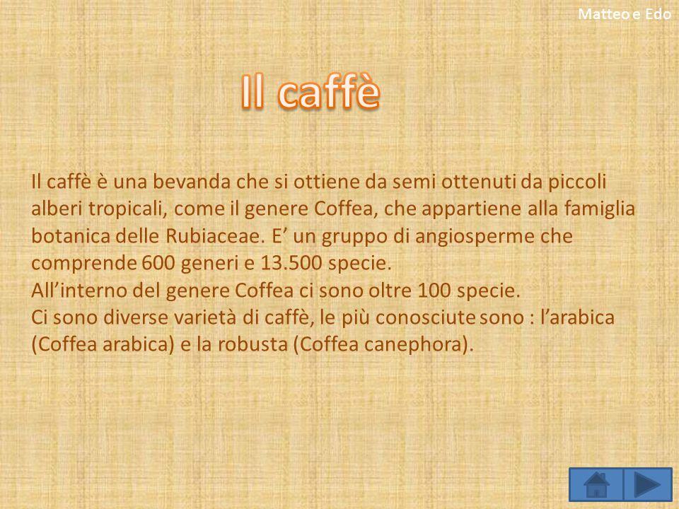 Matteo e Edo Il caffè.