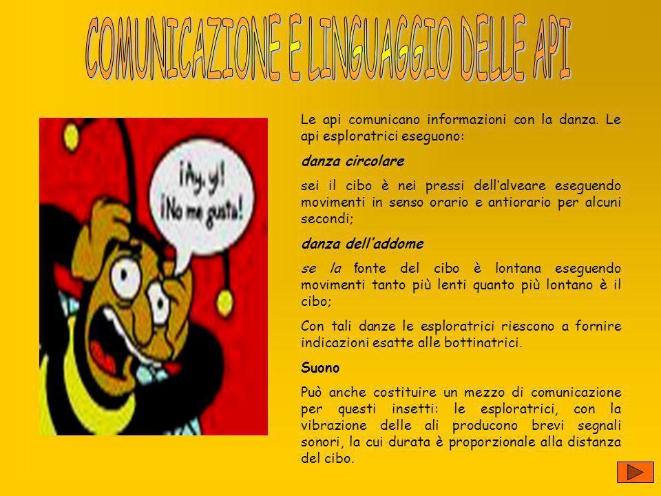 COMUNICAZIONE E LINGUAGGIO DELLE API