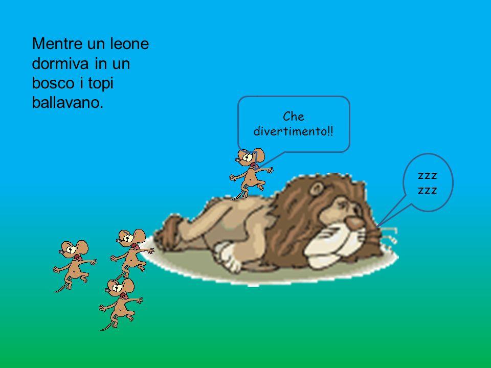 Mentre un leone dormiva in un bosco i topi ballavano.