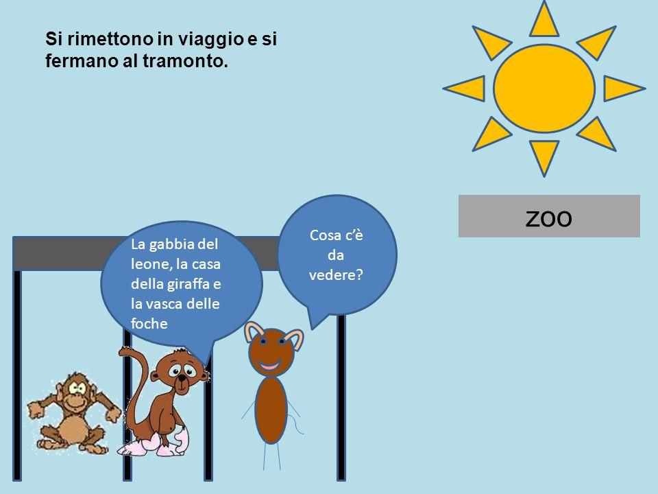 zoo Si rimettono in viaggio e si fermano al tramonto.