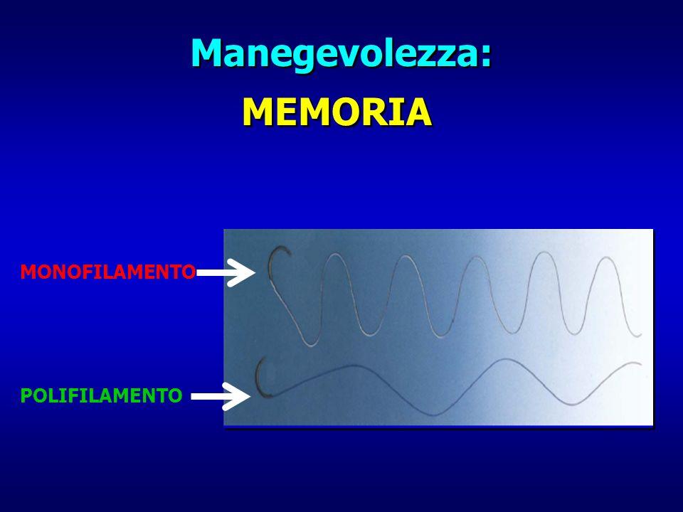 Manegevolezza: MEMORIA