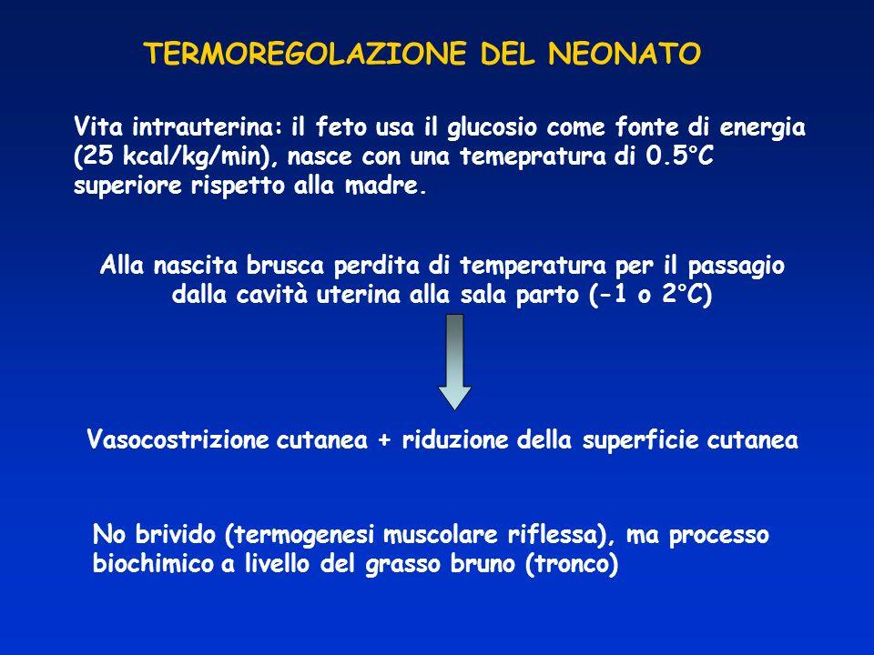 Vasocostrizione cutanea + riduzione della superficie cutanea