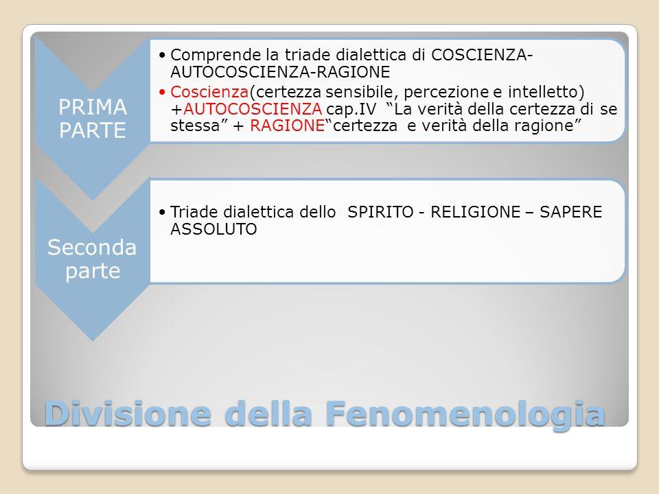 Divisione della Fenomenologia