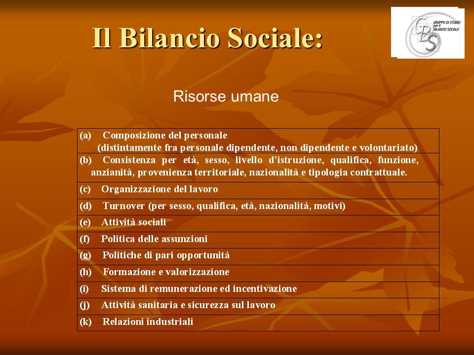Il Bilancio Sociale: Risorse umane