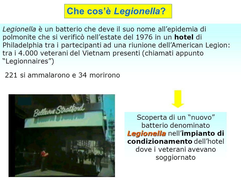 Che cos'è Legionella