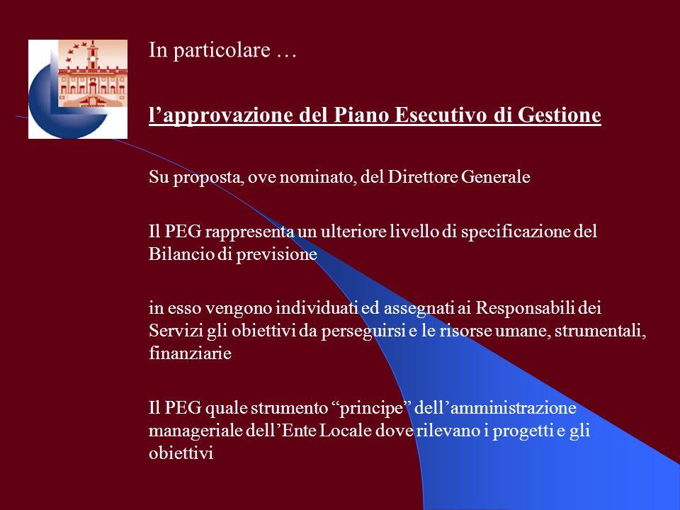 l'approvazione del Piano Esecutivo di Gestione