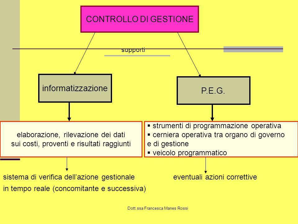 CONTROLLO DI GESTIONE informatizzazione P.E.G.