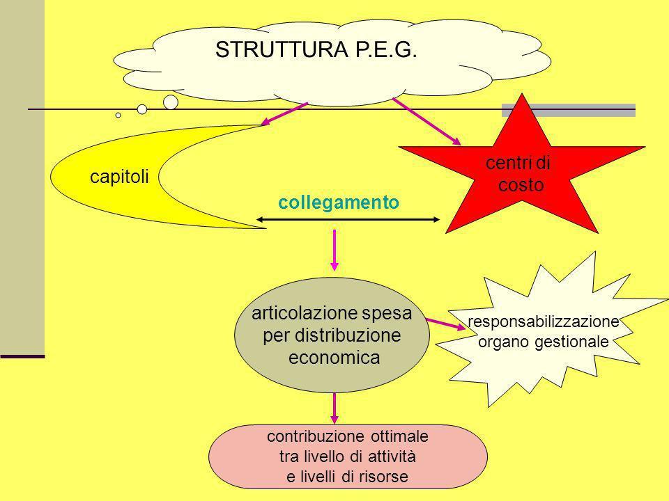 STRUTTURA P.E.G. centri di costo capitoli collegamento
