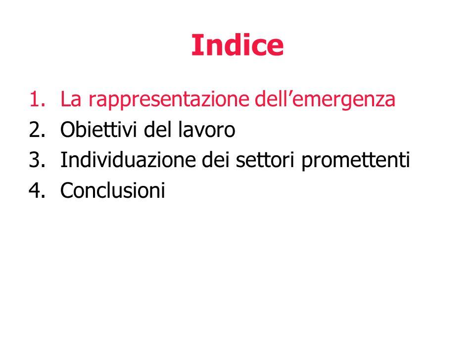 Indice La rappresentazione dell'emergenza Obiettivi del lavoro