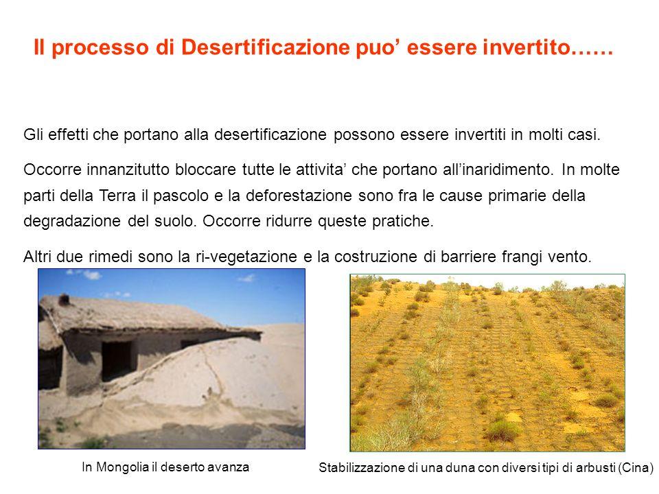 Il processo di Desertificazione puo' essere invertito……