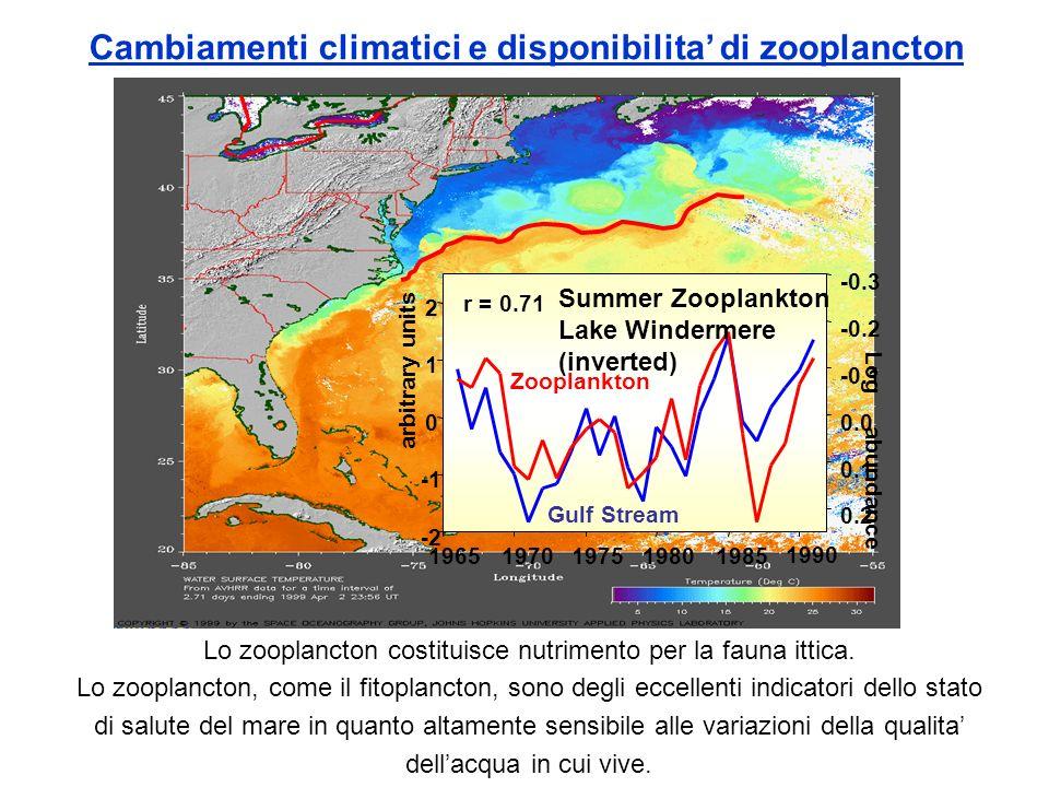 Cambiamenti climatici e disponibilita' di zooplancton