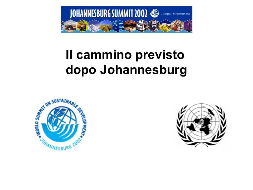 Il cammino previsto dopo Johannesburg