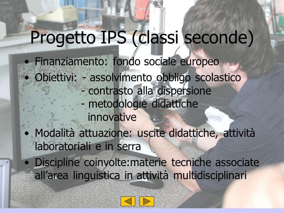 Progetto IPS (classi seconde)