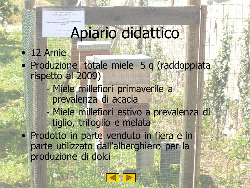 Apiario didattico 12 Arnie