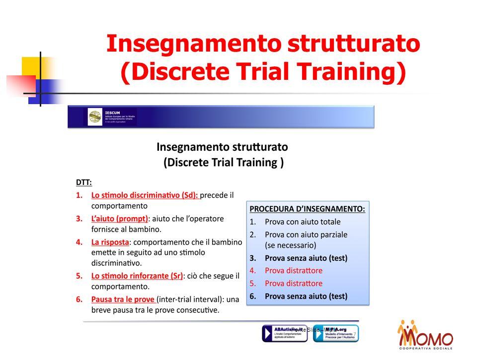 Insegnamento strutturato (Discrete Trial Training)