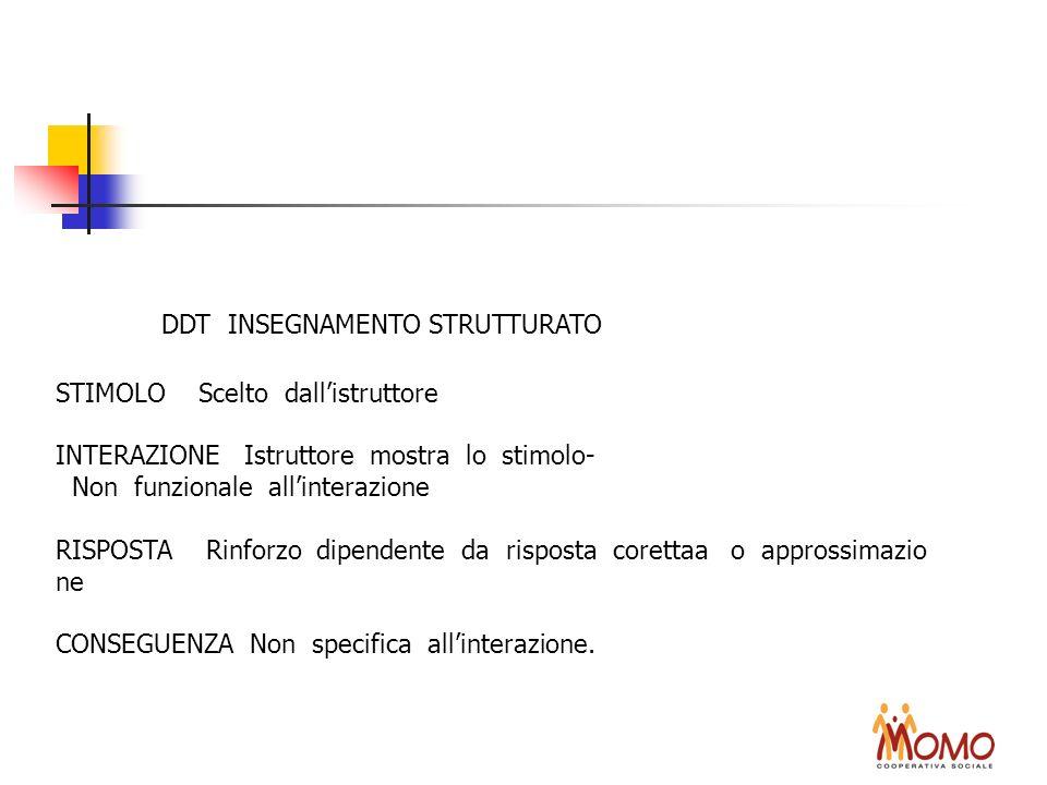 DDT INSEGNAMENTO STRUTTURATO