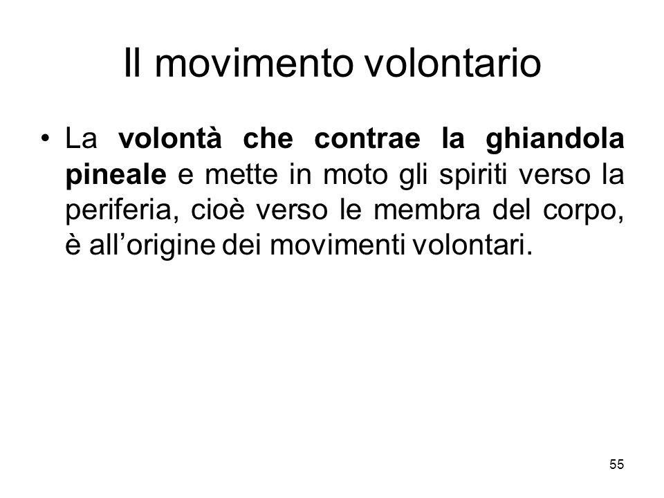 Il movimento volontario