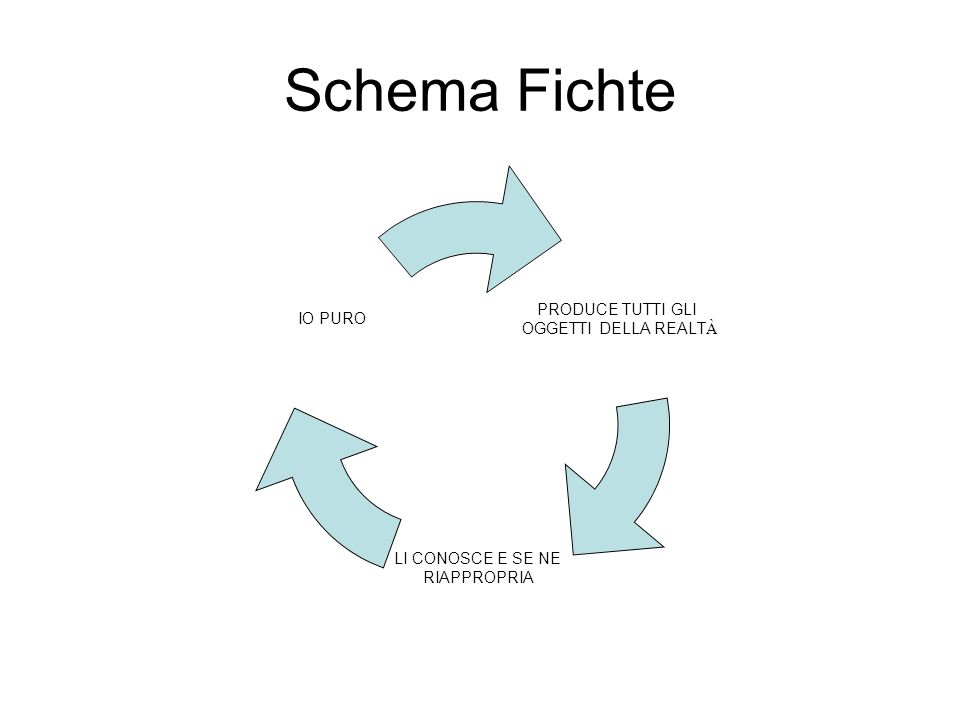 Schema Fichte