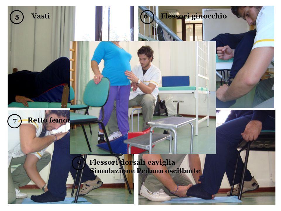 5 Vasti 6 Flessori ginocchio. 8 Gastrocnemio. 7 Retto femorale. Flessori dorsali caviglia.
