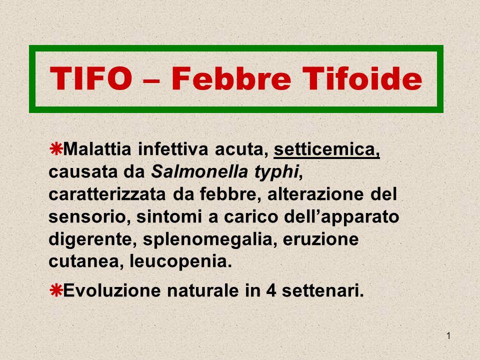 TIFO – Febbre Tifoide