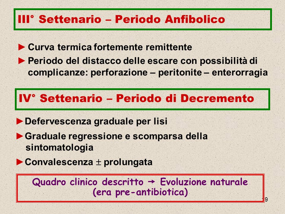 III° Settenario – Periodo Anfibolico