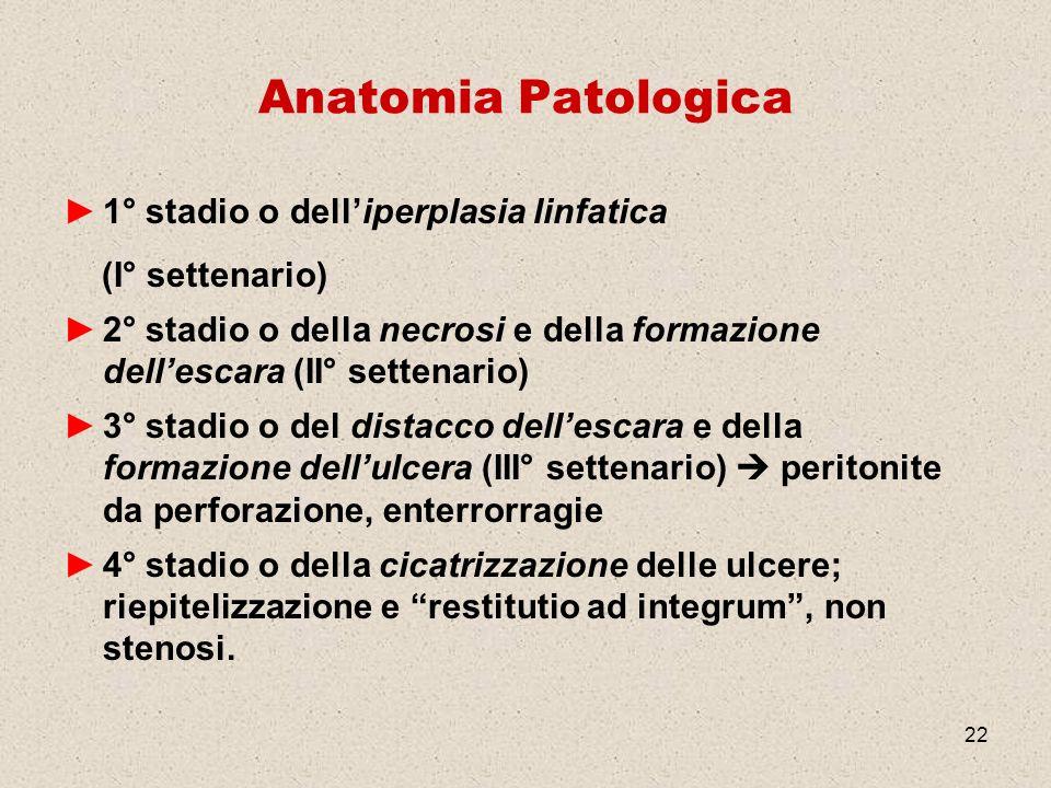 Anatomia Patologica 1° stadio o dell'iperplasia linfatica