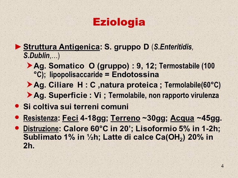 Eziologia Struttura Antigenica: S. gruppo D (S.Enteritidis, S.Dublin,…)