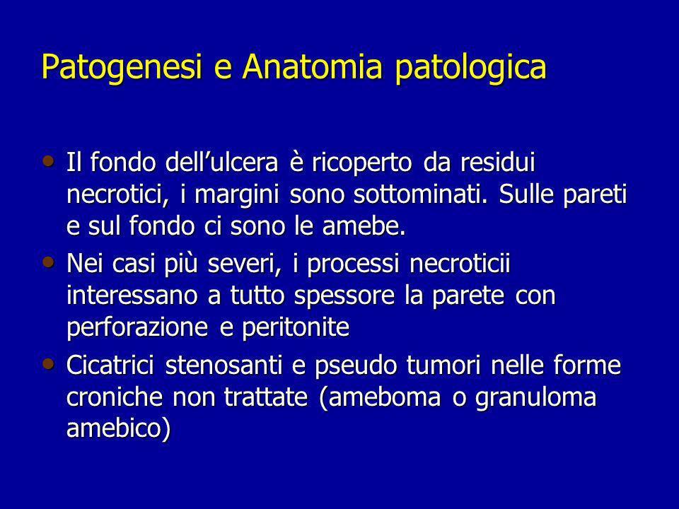 Patogenesi e Anatomia patologica
