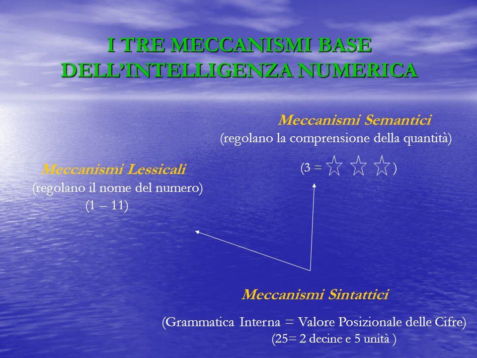 I TRE MECCANISMI BASE DELL'INTELLIGENZA NUMERICA