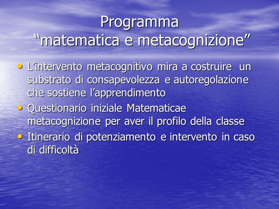 Programma matematica e metacognizione