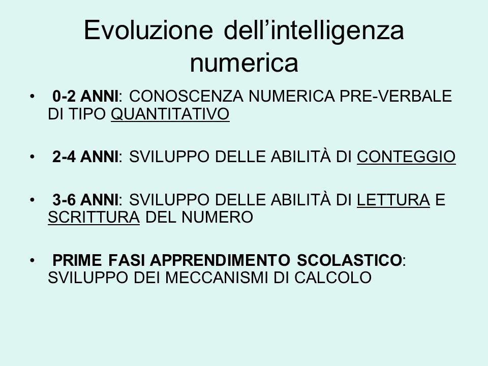 Evoluzione dell'intelligenza numerica