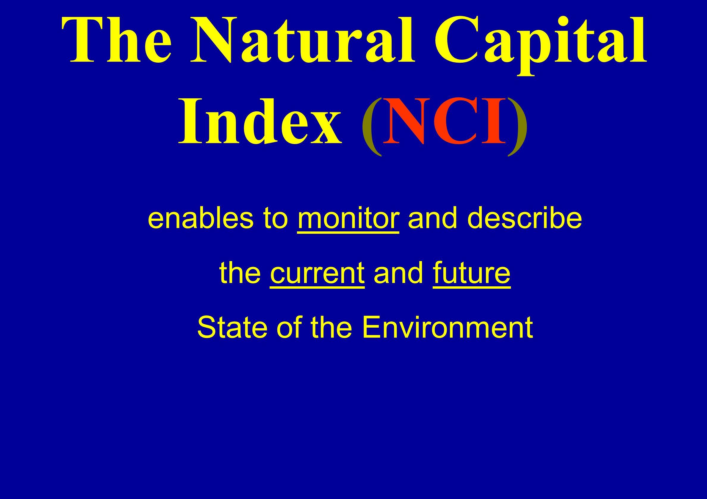 The Natural Capital Index (NCI)