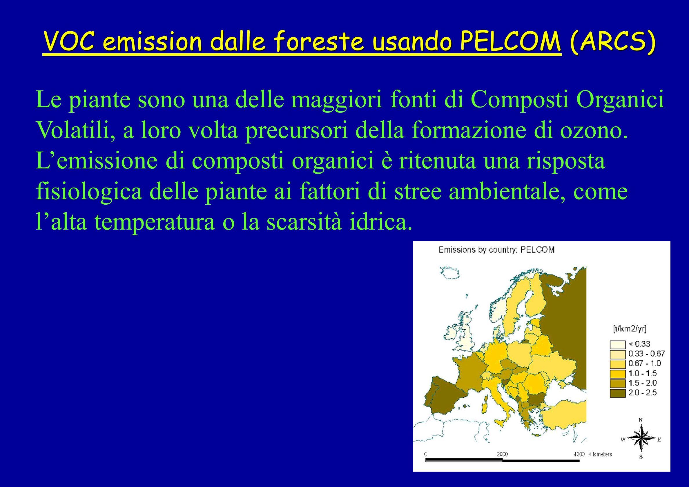VOC emission dalle foreste usando PELCOM (ARCS)