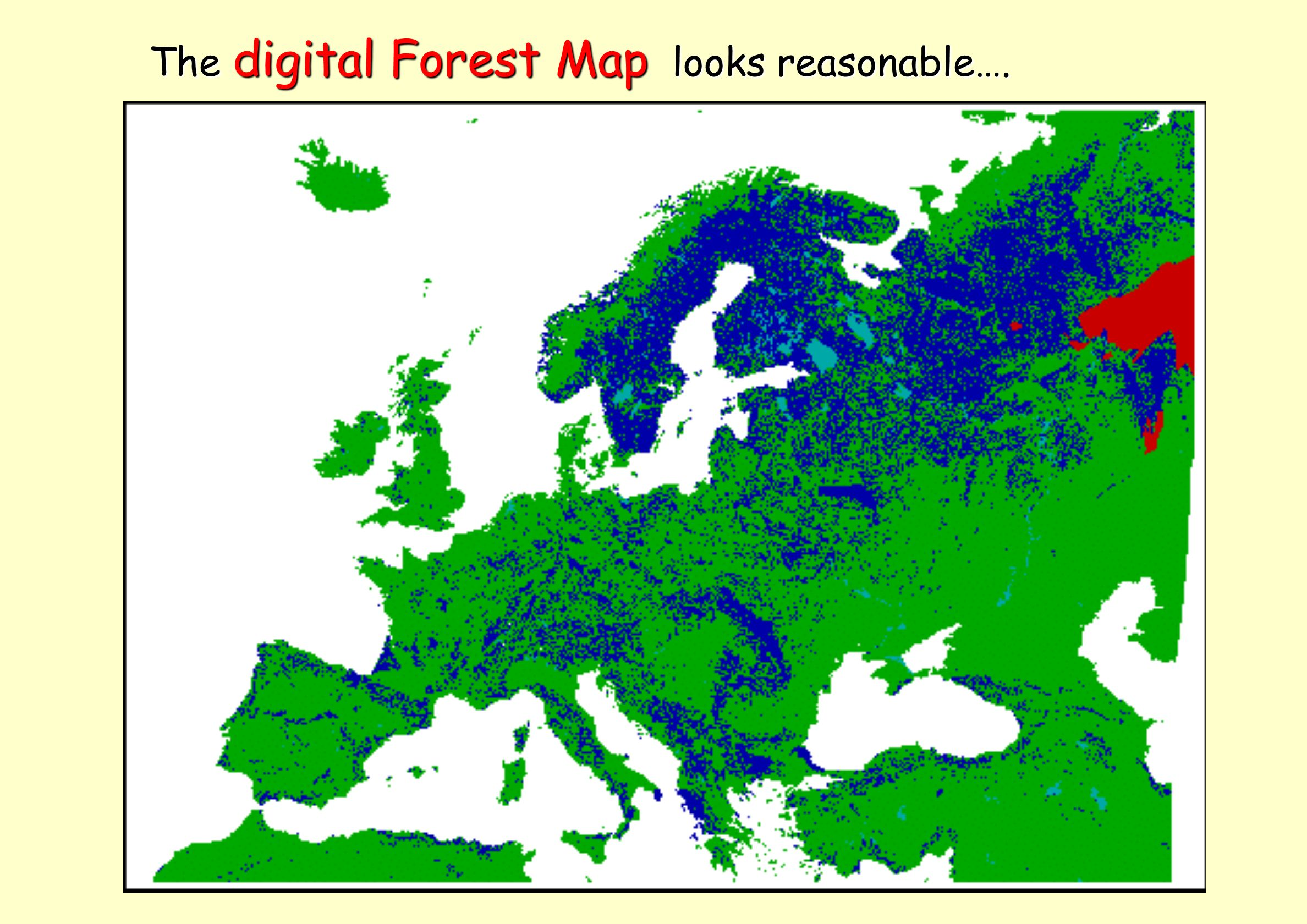 The digital Forest Map looks reasonable….