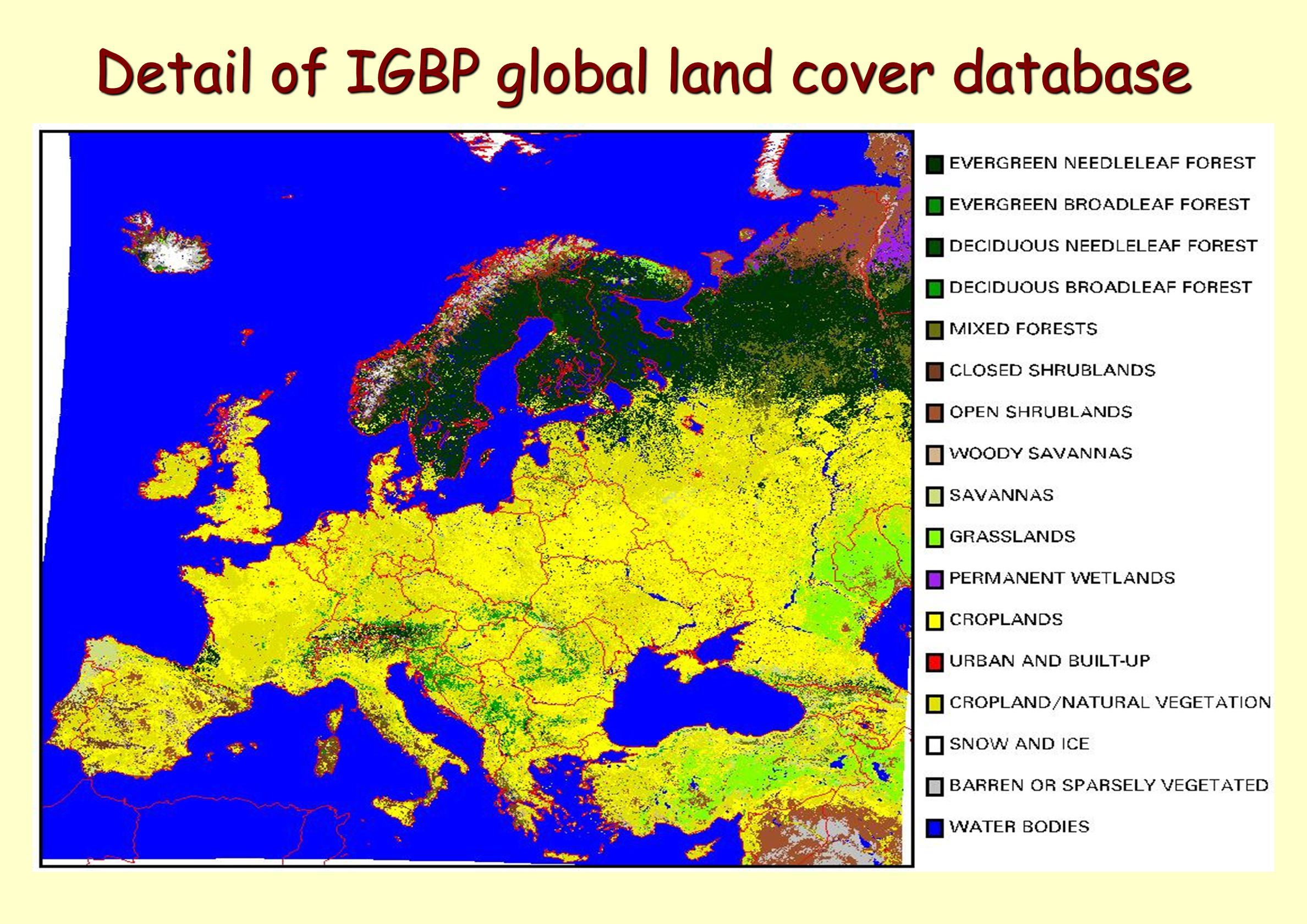 Detail of IGBP global land cover database