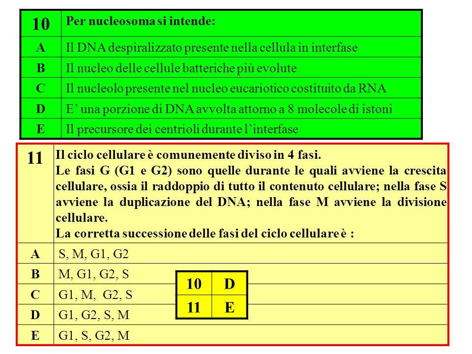 10 11 10 D 11 E Per nucleosoma si intende: A