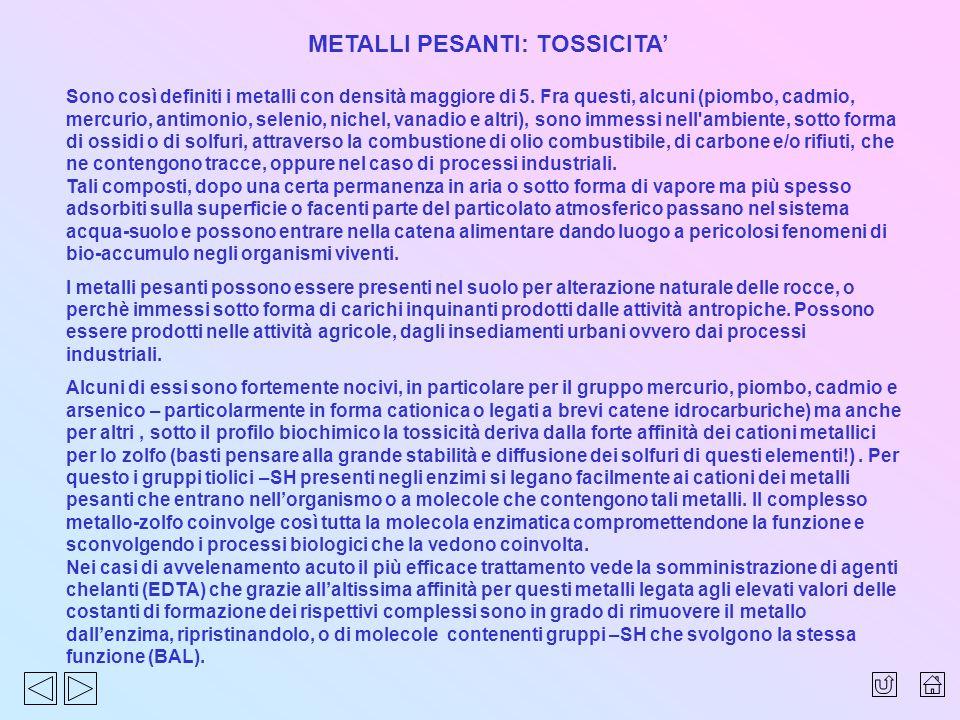 METALLI PESANTI: TOSSICITA'