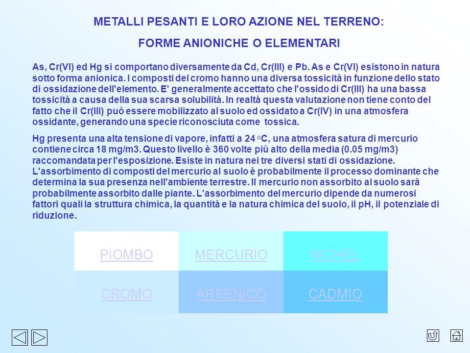 PIOMBO MERCURIO NICHEL CROMO ARSENICO CADMIO